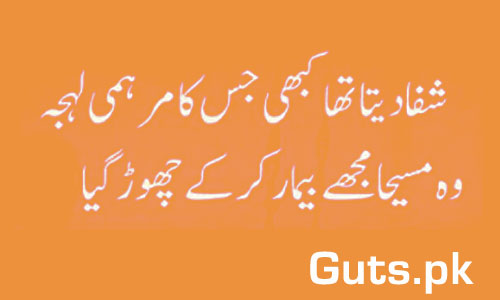 Dil na Kisi Poetry Whatsapp Status in Urdu