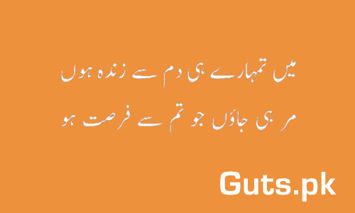 Fursat Poetry Whatsapp Status in Urdu