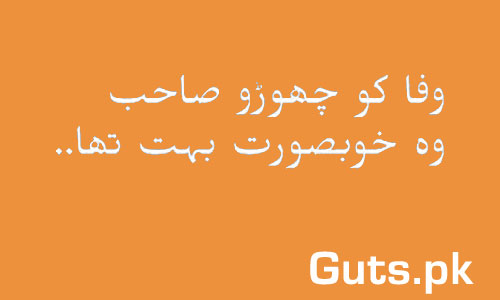 Umeed e Wafa Poetry Whatsapp Status in Urdu