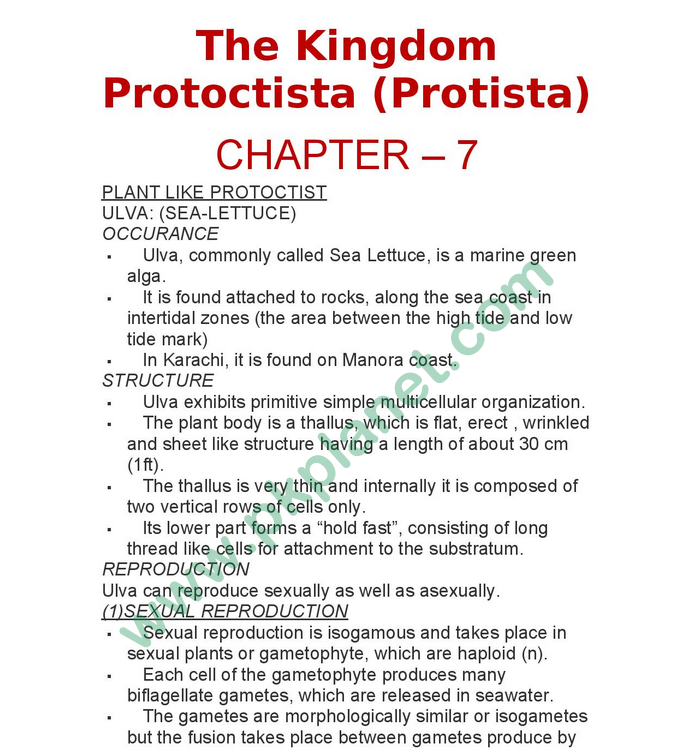 1st Year Biology Notes Chapter # 7 (Kingdom Protoctista Protista)